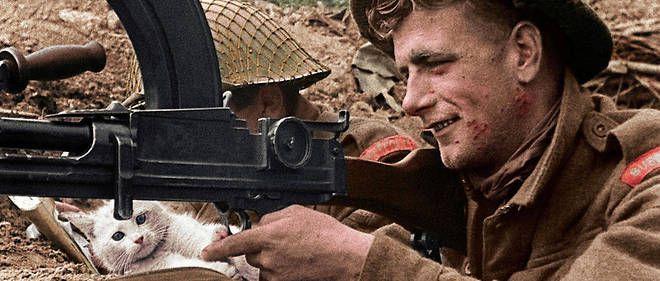 39-45, les animaux dans la guerre - Documentaire (2019)