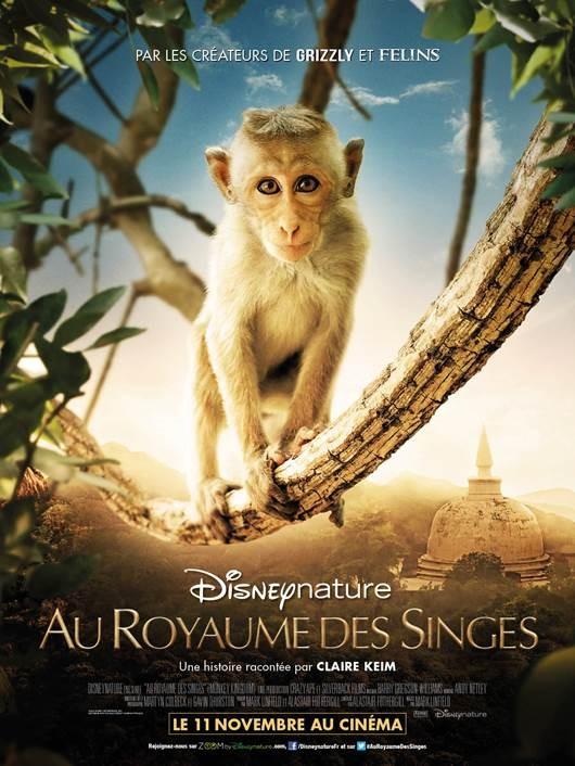 Au royaume des singes - Documentaire (2015)