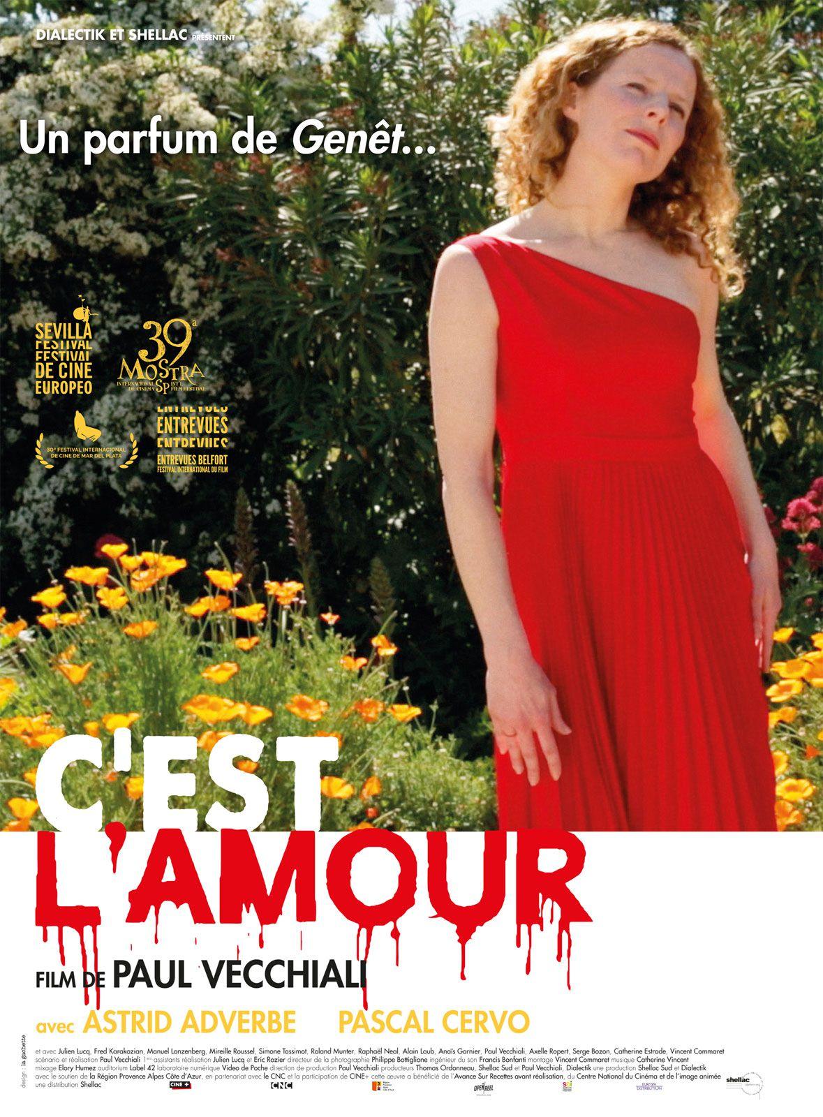 C'est l'amour - Film (2015)