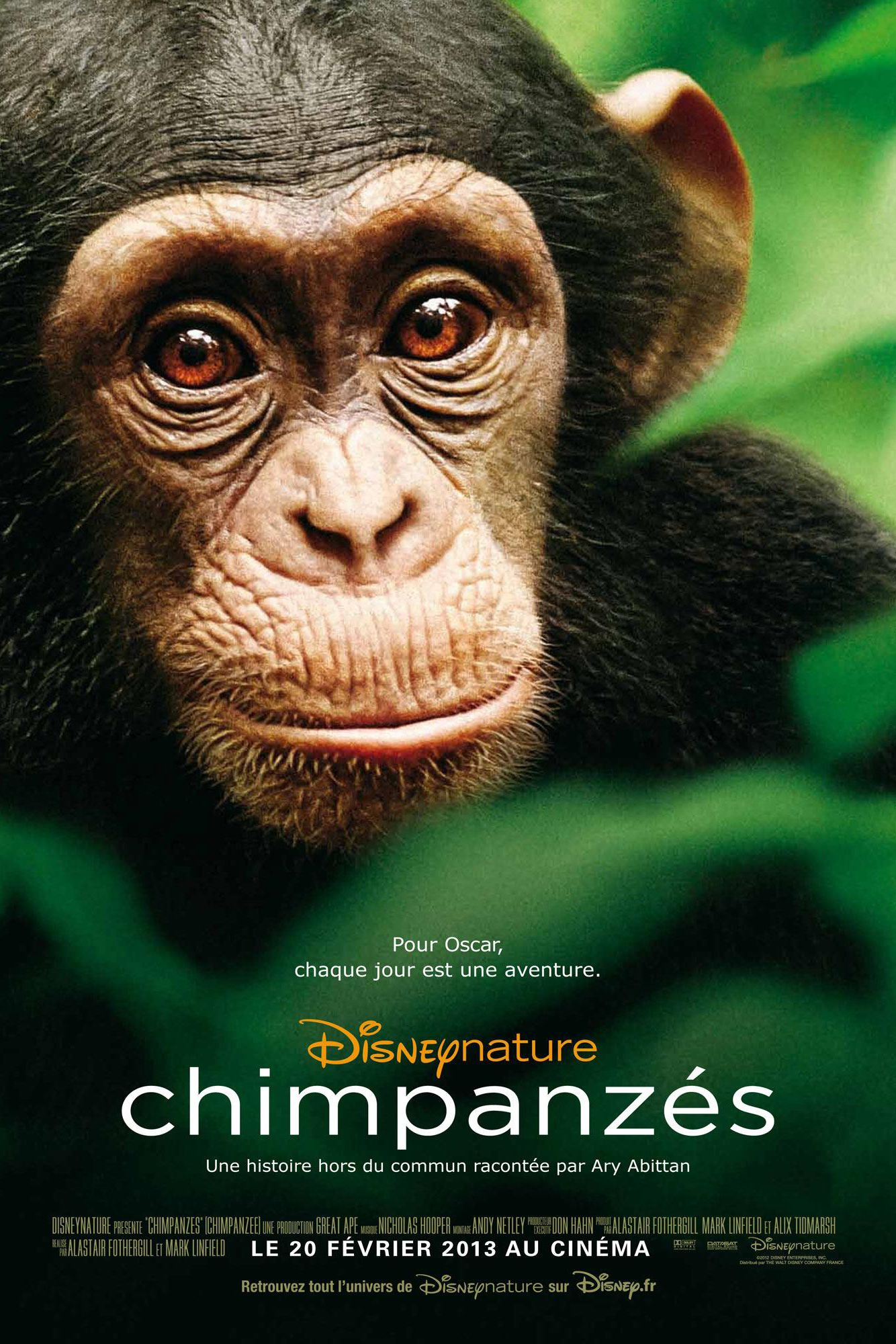 Chimpanzés - Documentaire (2012)