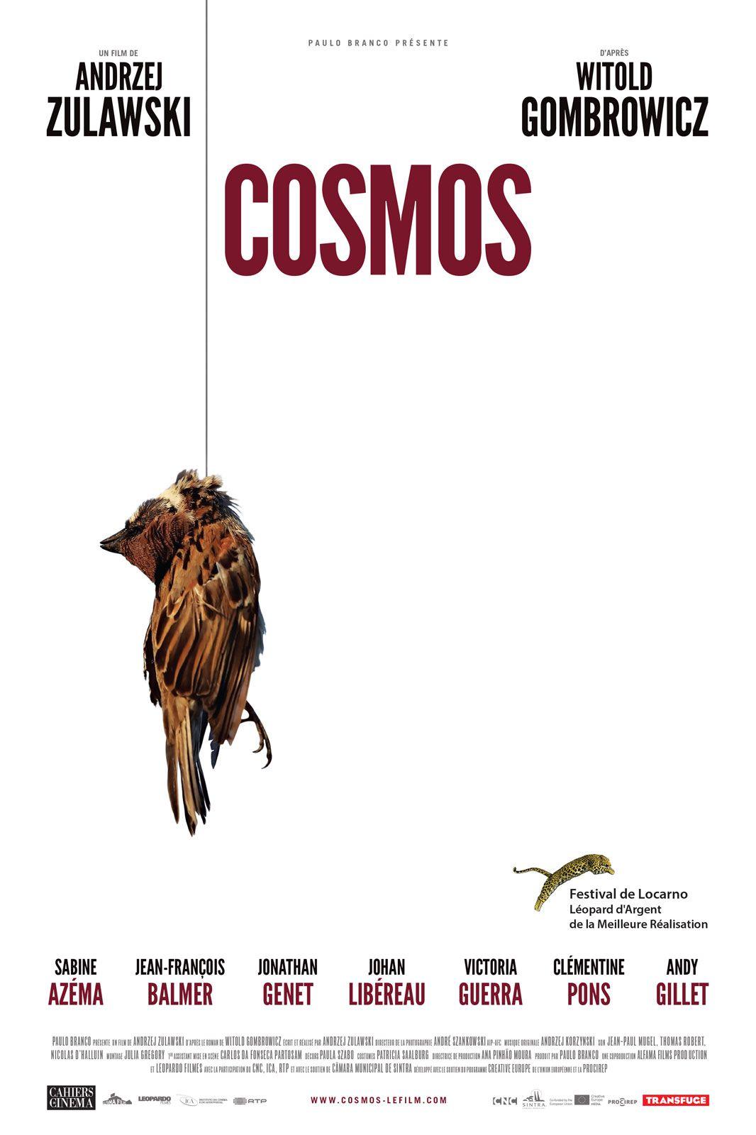 Cosmos - Film (2015)