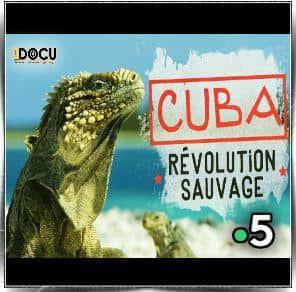 Cuba, révolution sauvage - Documentaire (2019)