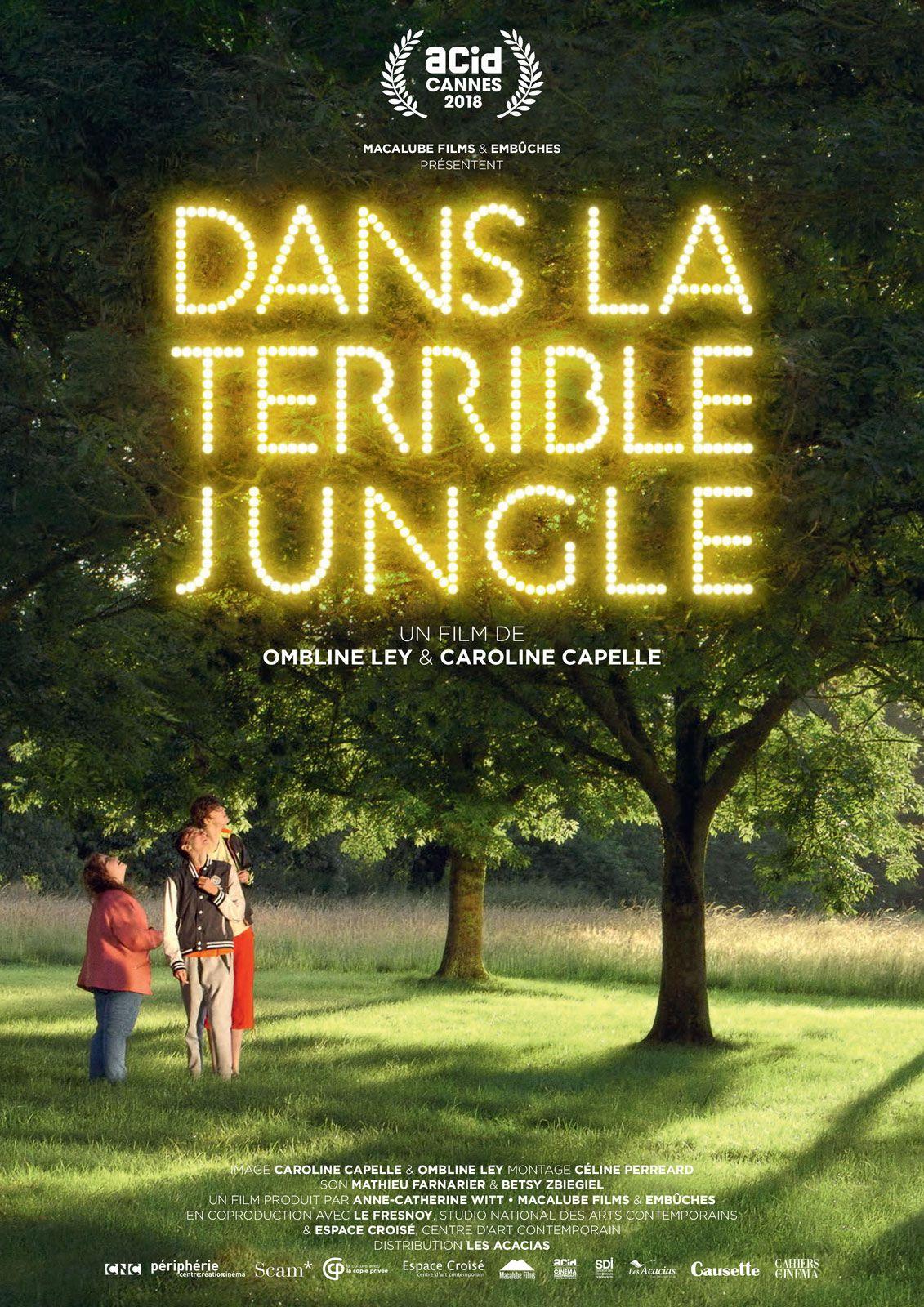Dans la terrible jungle - Documentaire (2019)