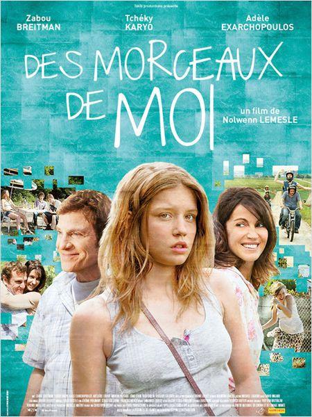 Des morceaux de moi - Film (2013)