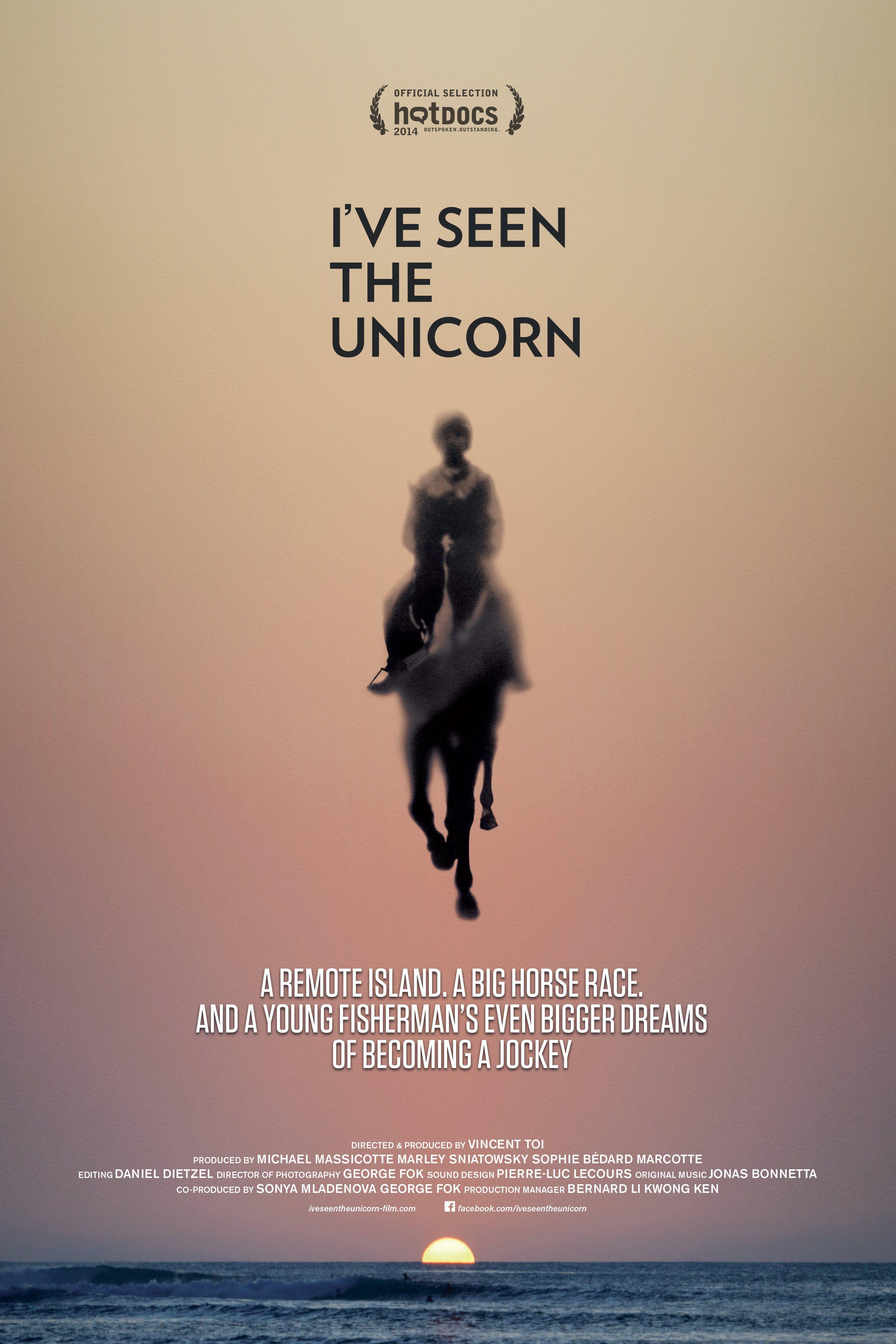 I've Seen the Unicorn - Documentaire (2014)