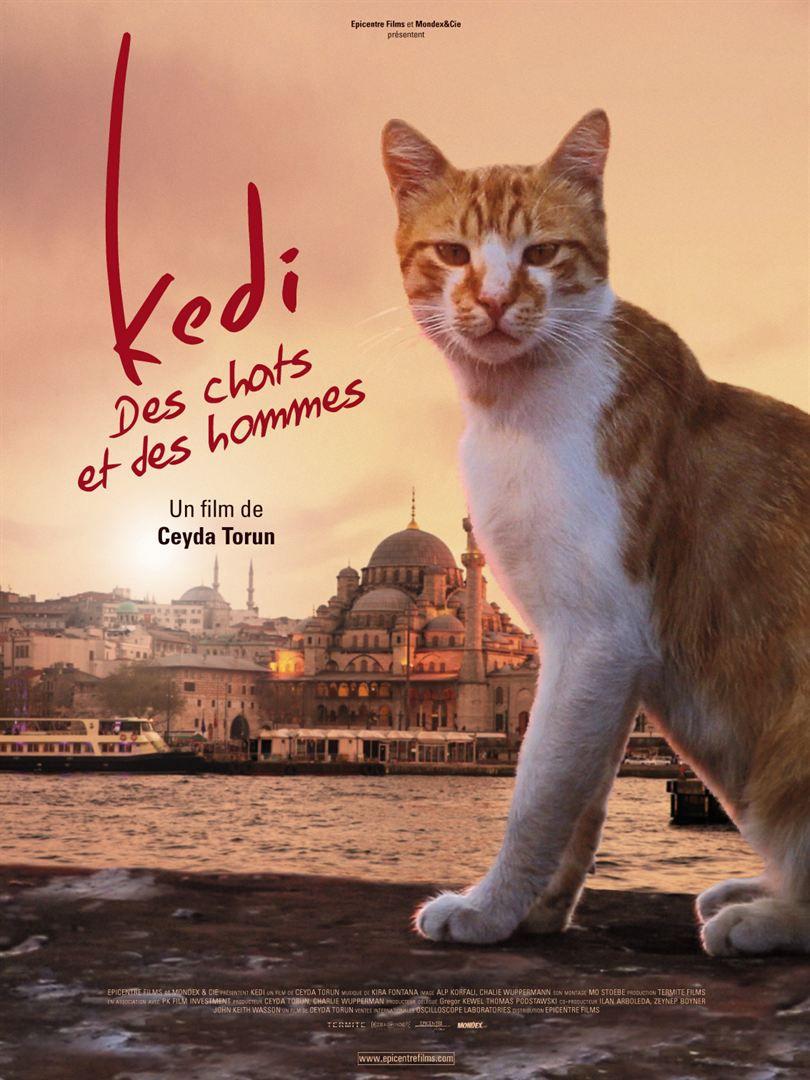 Kedi : Des Chats et des Hommes - Documentaire (2017)