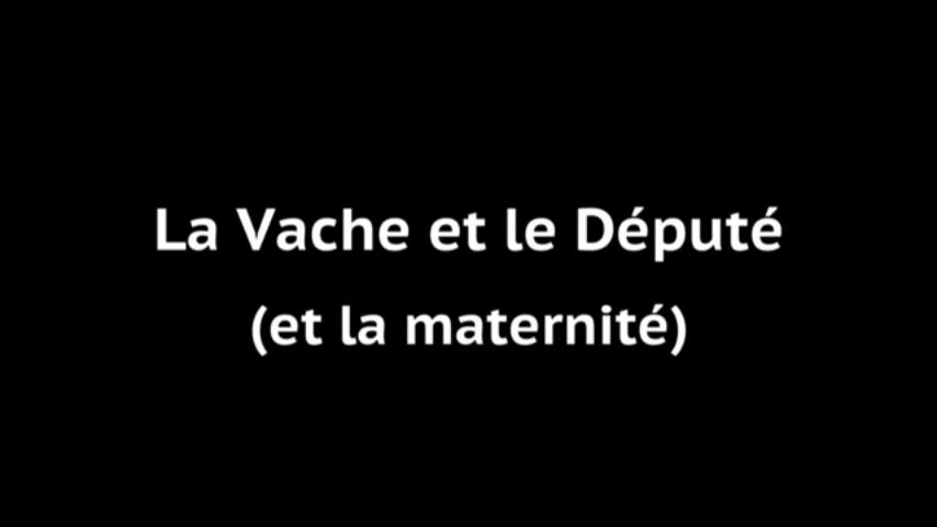 LA VACHE ET LE DÉPUTÉ - Documentaire (2017)