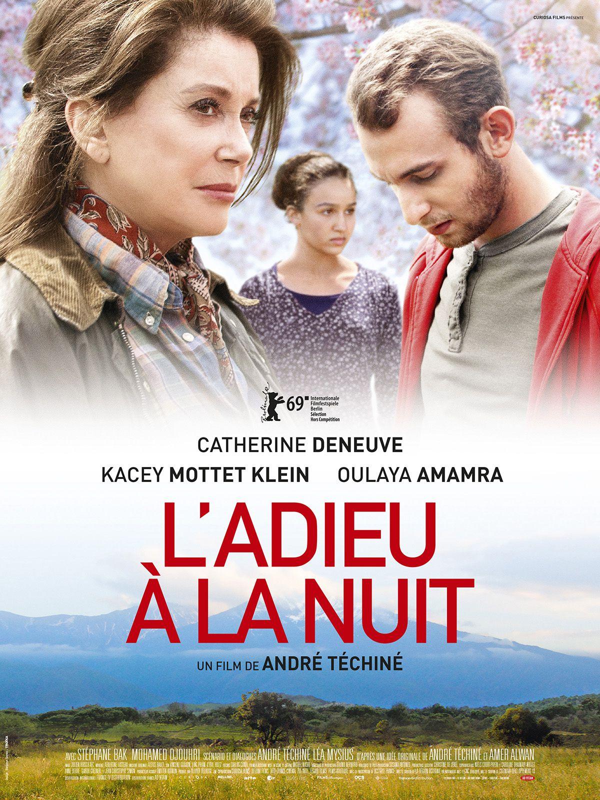 L'Adieu à la nuit - Film (2019)
