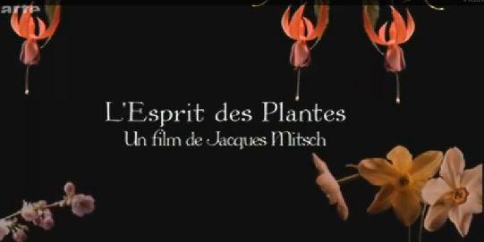 L'Esprit des plantes - Documentaire (2010)