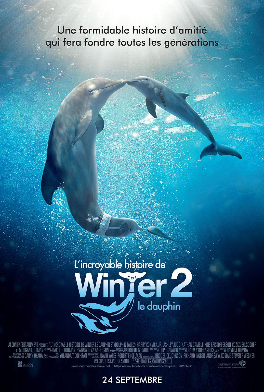 L'Incroyable Histoire de Winter le dauphin 2 - Film (2014)
