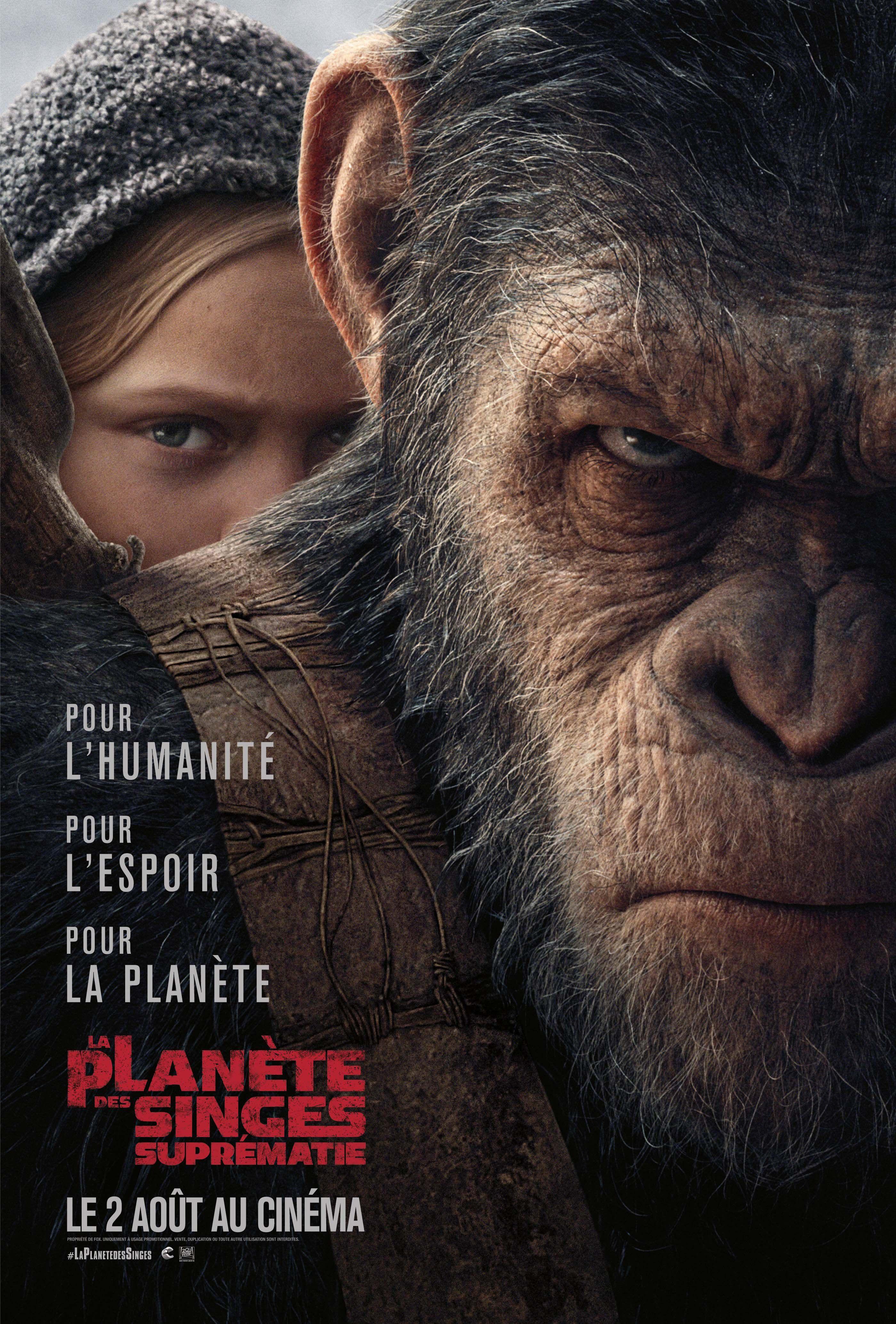 La Planète des singes : Suprématie - Film (2017)