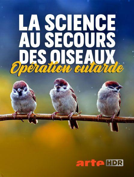 La science au secours des oiseaux : Opération outarde - Documentaire (2020)