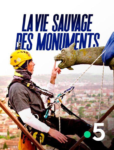 La vie sauvage des monuments - Documentaire (2021)
