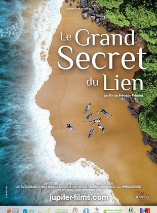 Le Grand Secret du lien - Documentaire (2021)