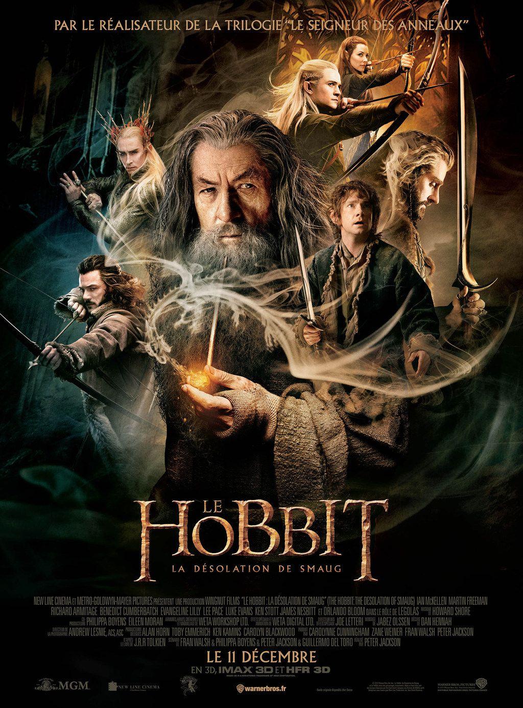 Le Hobbit : La Désolation de Smaug - Film (2013)