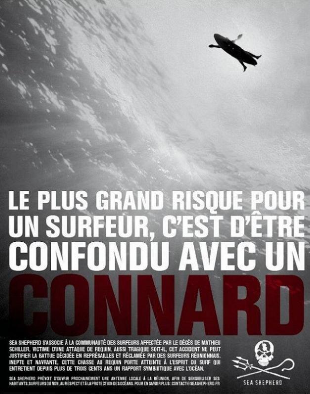 Le requin, l'île et les surfeurs - Documentaire (2014)