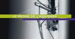 Le règne de l'araignée - Documentaire (2012)