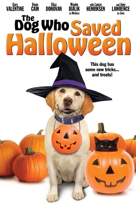 Le sauveur d'Halloween - Film (2011)