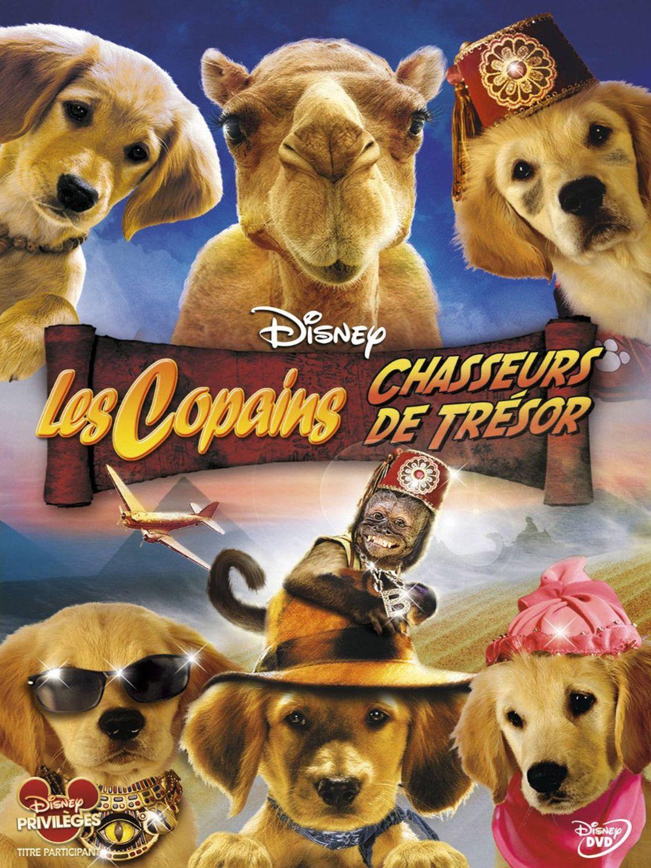 Les Copains chasseurs de trésor - Film (2012)