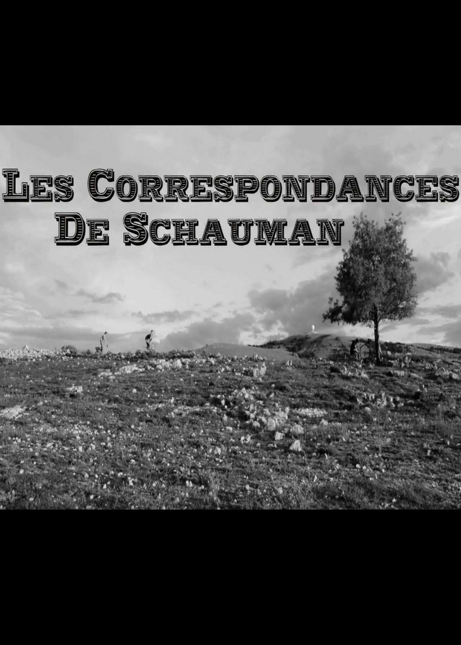 Les Correspondances de Schauman - Film (2014)