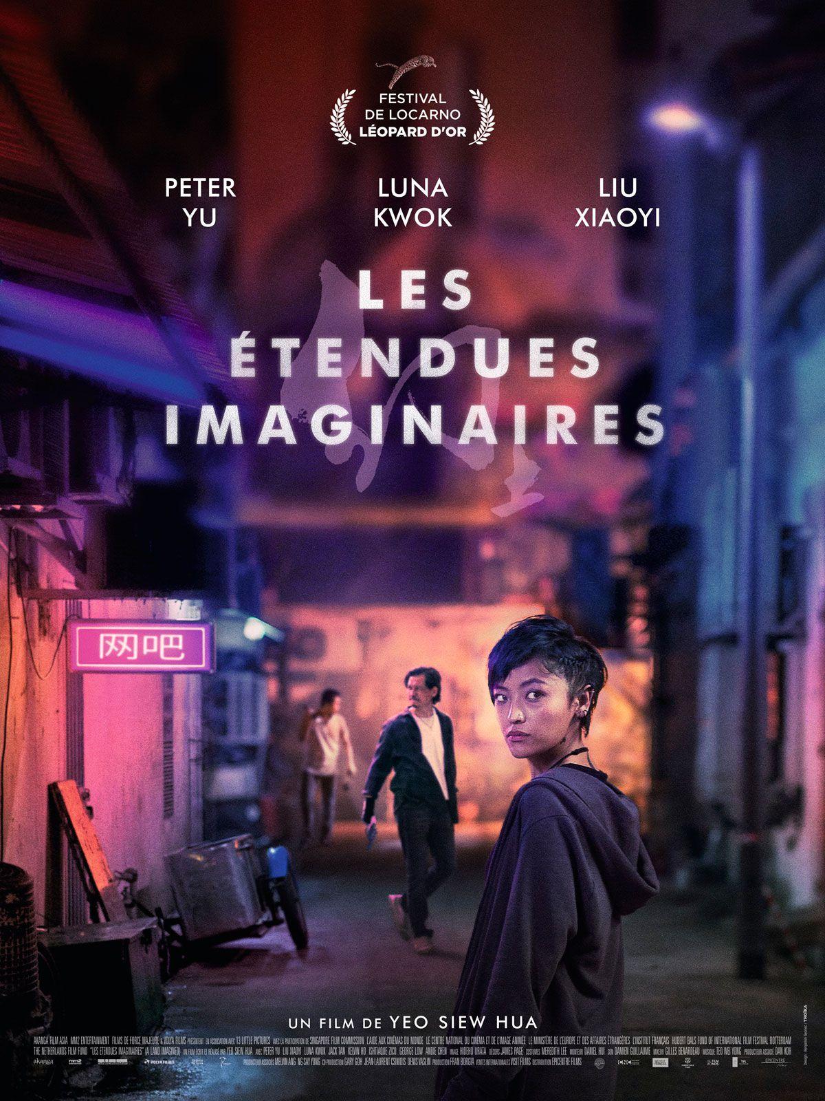 Les Étendues imaginaires - Film (2019)