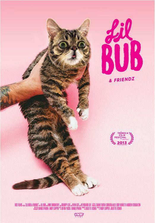 Lil BUB & Friendz - Documentaire (2013)