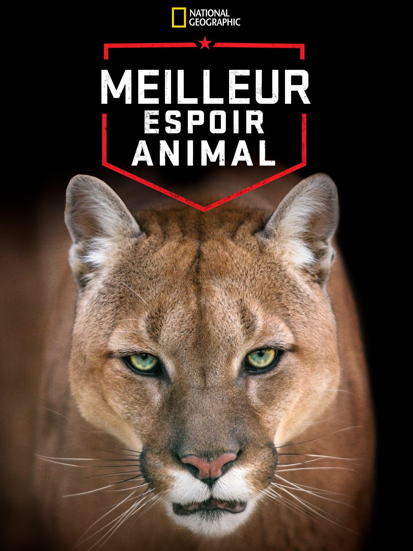 Meilleur espoir animal - Documentaire (2012)