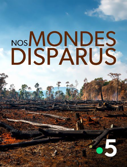 Nos mondes disparus - Documentaire (2020)