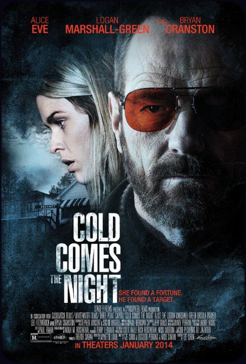 Quand tombe la nuit - Film (2013)