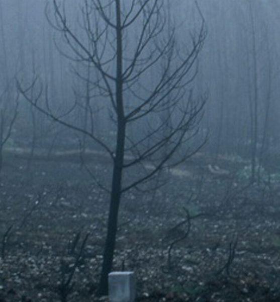 Retrato de Inverno de uma Paisagem Ardida - Documentaire (2008)
