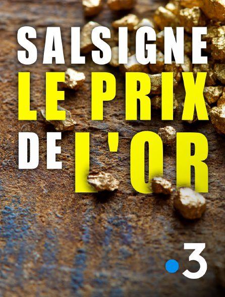 Salsigne : le prix de l'or - Documentaire (2021)