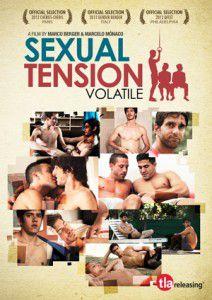 Sexual Tension: Volatile - Film (2013)