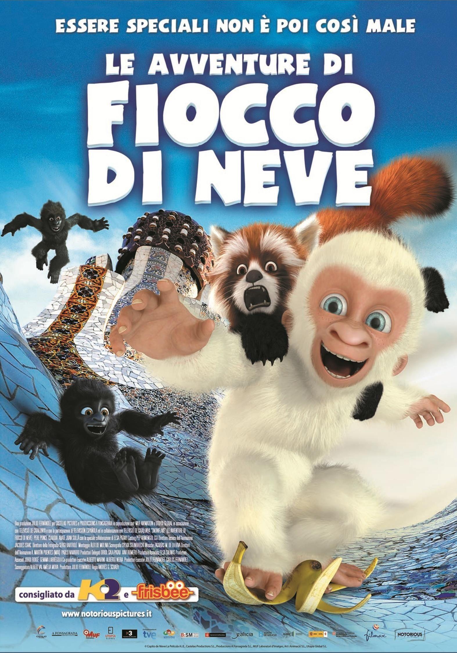 Snowflake, le gorille blanc - Film (2013)