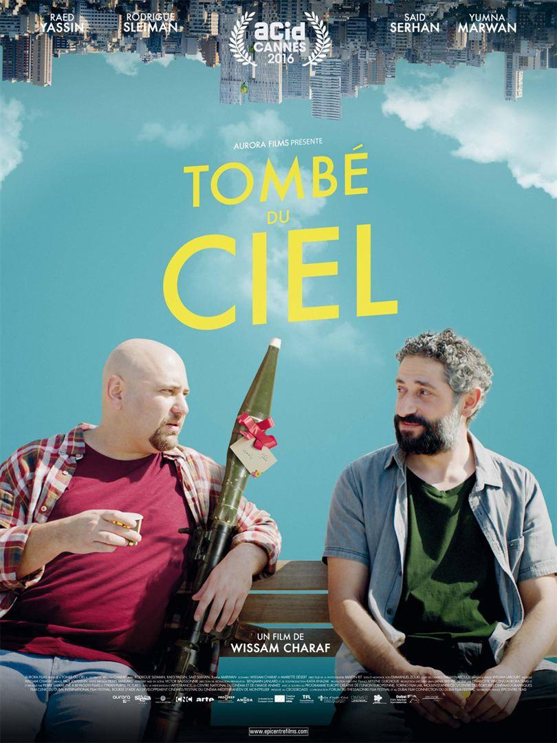 Tombé du ciel - Film (2017)