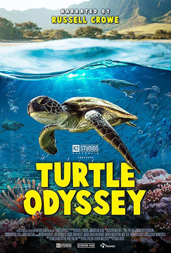 Turtle Odyssey - Documentaire (2019)