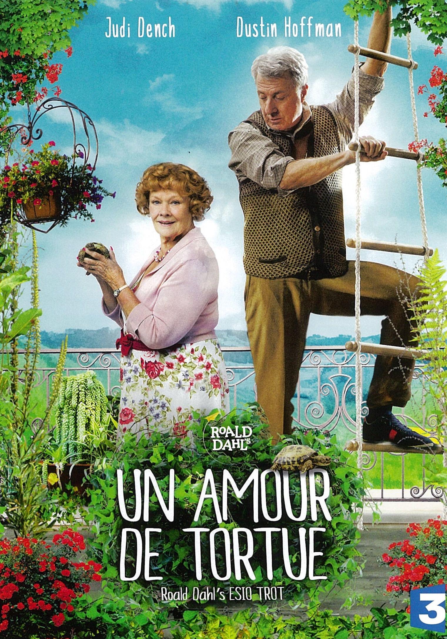 Un amour de tortue - Film (2014)