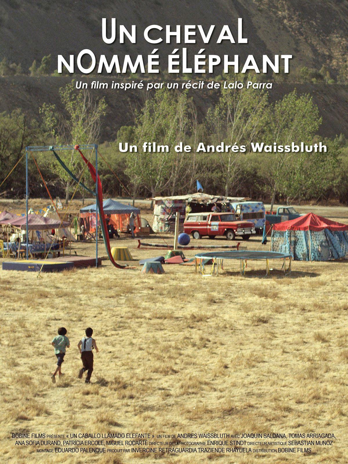 Un cheval nommé éléphant - Film (2018)