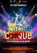 Une nuit au cirque 3D - Documentaire (2010)