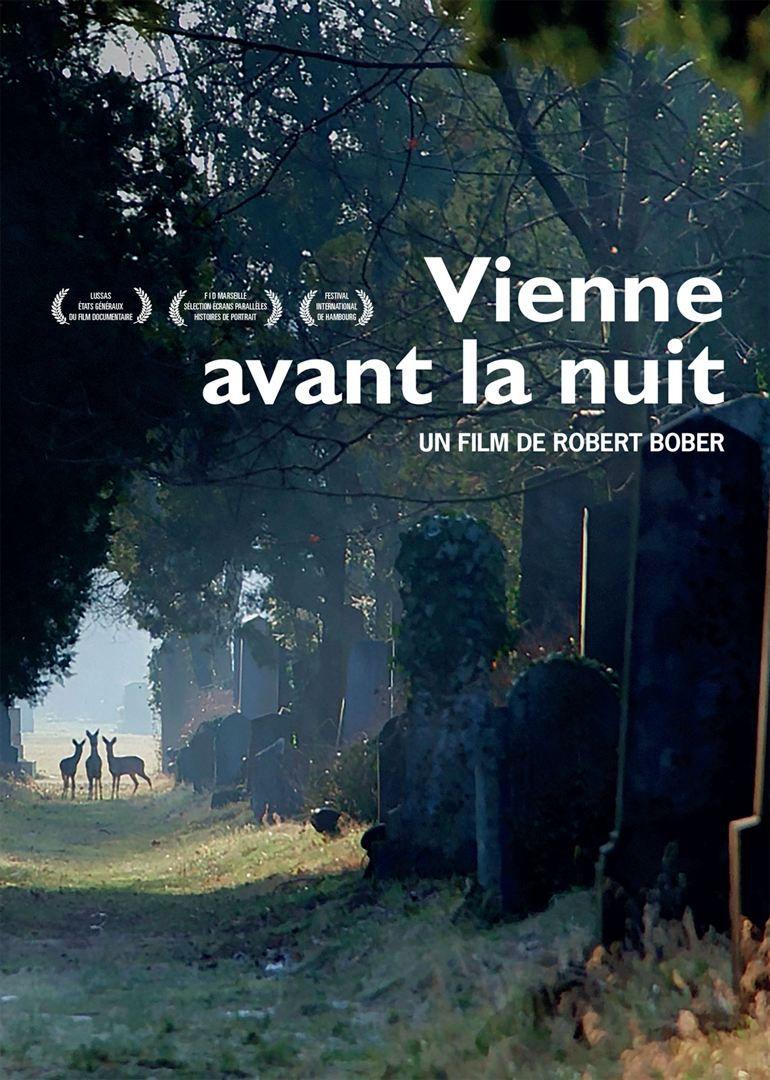 Vienne avant la nuit - Documentaire (2017)
