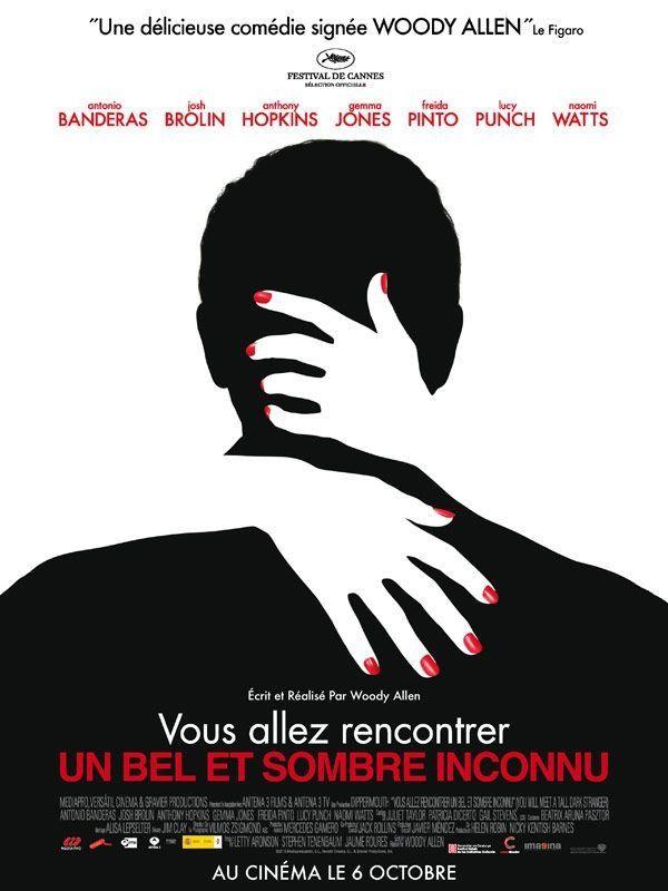 Vous allez rencontrer un bel et sombre inconnu - Film (2010)